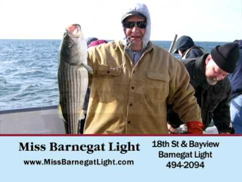 Lbi tv blog archive miss barnegat light sept 2012 for Miss barnegat light fishing report